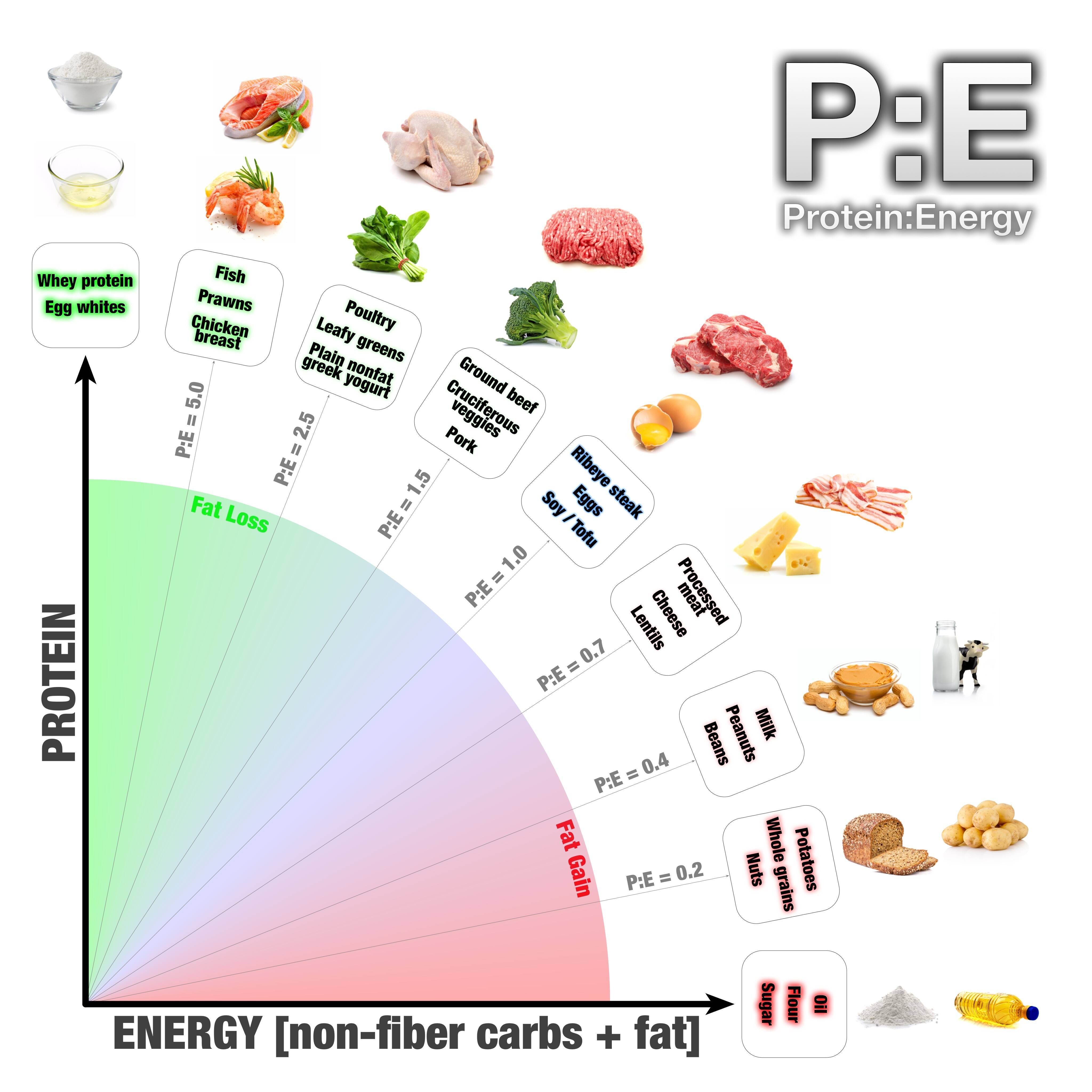 men dieting card and fat and protein ratio